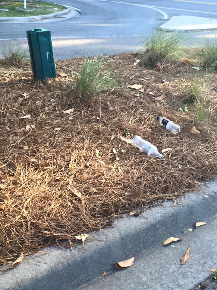 Latest News - Keep Savannah Clean